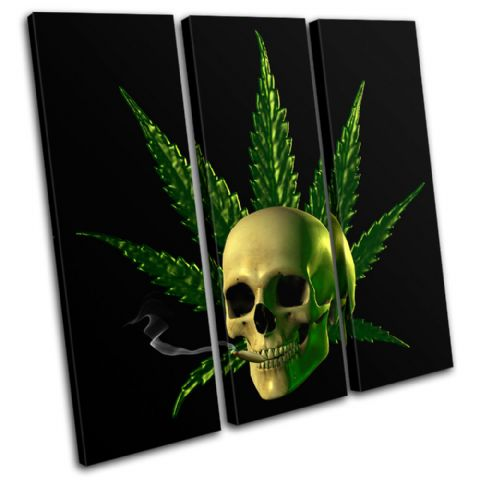 Cannabis Skull Illustration - 13-1325(00B)-TR11-LO